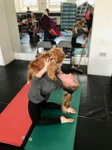 doga-dog-yoga